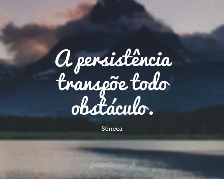 A persistência transpõe todo obstáculo.