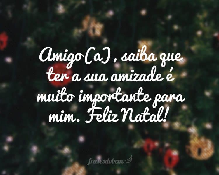 Amigo(a), saiba que ter a sua amizade é muito importante para mim. Feliz Natal!