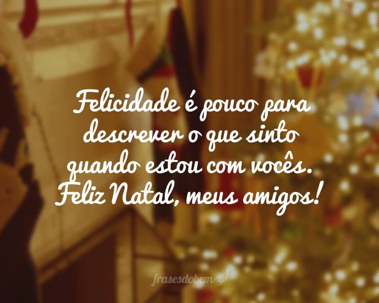 Felicidade é pouco para descrever o que sinto quando estou com vocês. Feliz Natal, meus amigos!