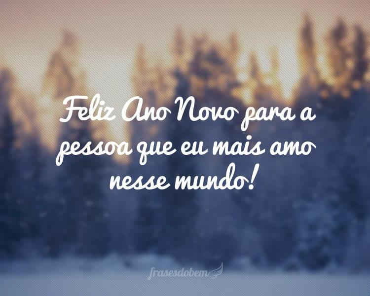 Feliz Ano Novo para a pessoa que eu mais amo nesse mundo!