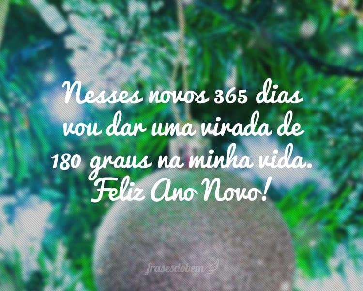 Nesses novos 365 dias vou dar uma virada de 180 graus na minha vida. Feliz Ano Novo!