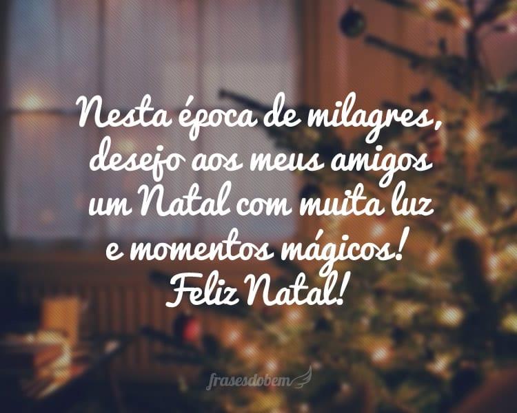 Nesta época de milagres, desejo aos meus amigos um Natal com muita luz e momentos mágicos! Feliz Natal!