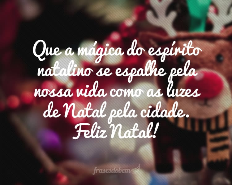Que a mágica do espírito natalino se espalhe pela nossa vida como as luzes de Natal pela cidade. Feliz Natal!