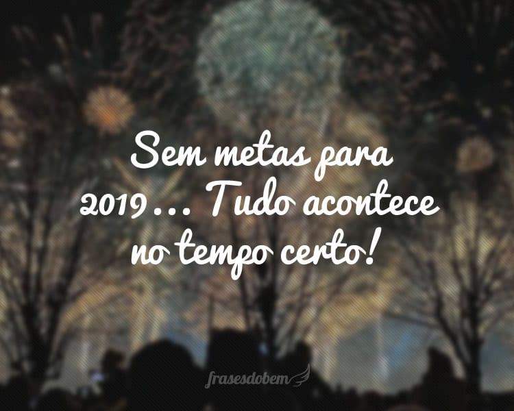 Sem metas para 2019... Tudo acontece no tempo certo!