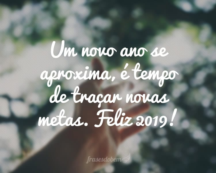 Um novo ano se aproxima, é tempo de traçar novas metas. Feliz 2019!