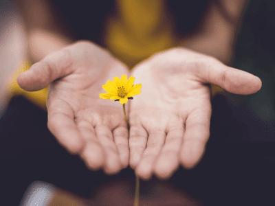 63 frases de simplicidade que provam que menos é mais
