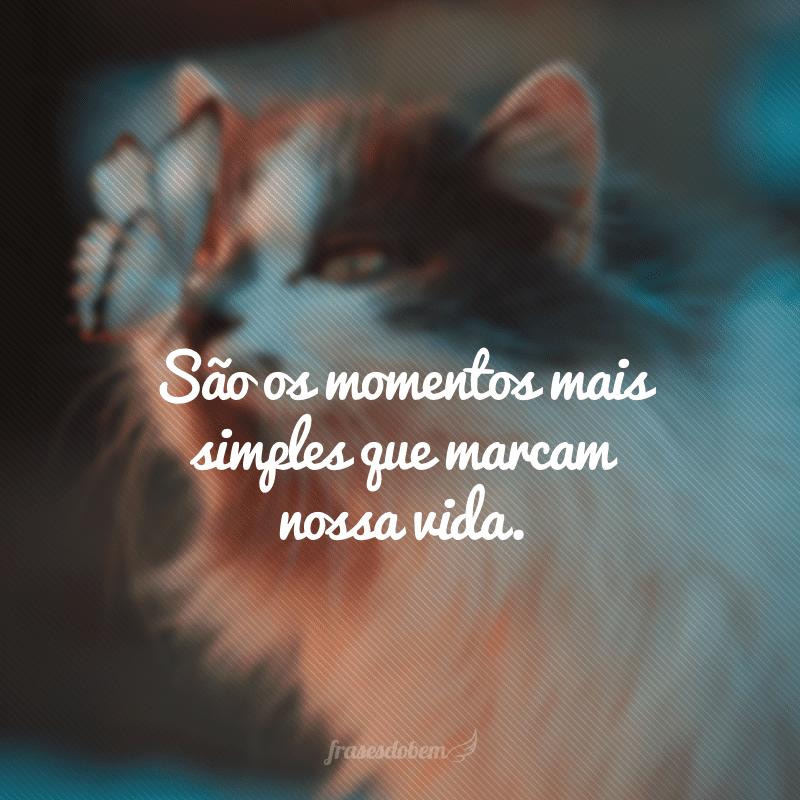 São os momentos mais simples que marcam nossa vida.