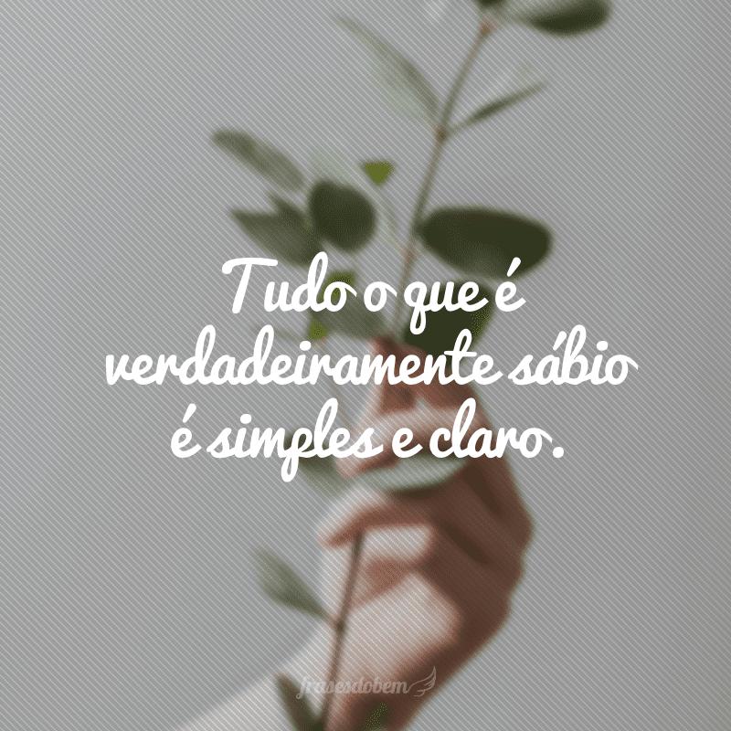 Tudo o que é verdadeiramente sábio é simples e claro.