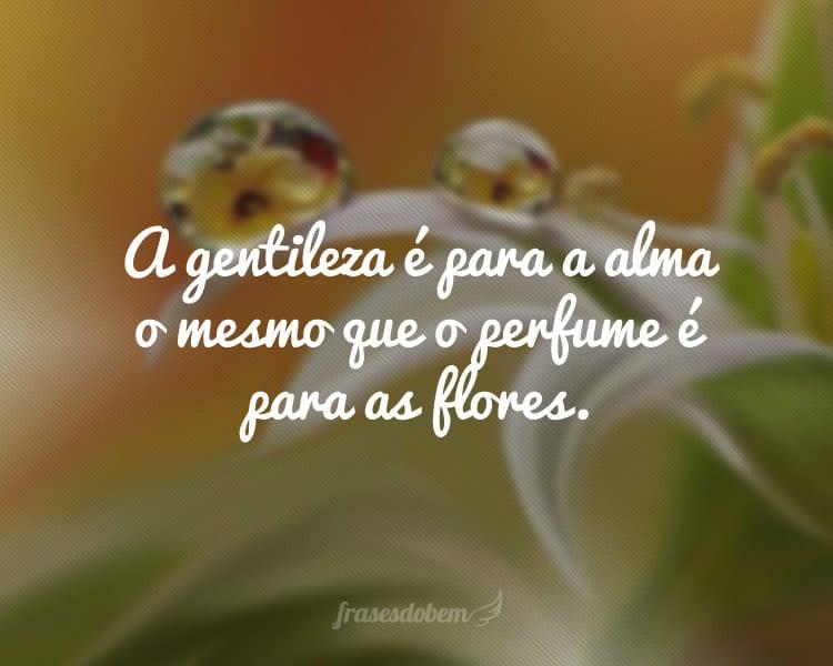 A gentileza é para a alma o mesmo que o perfume é para as flores.