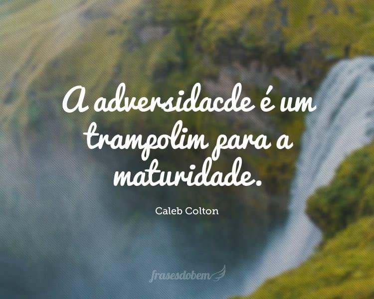 A adversidade é um trampolim para a maturidade.