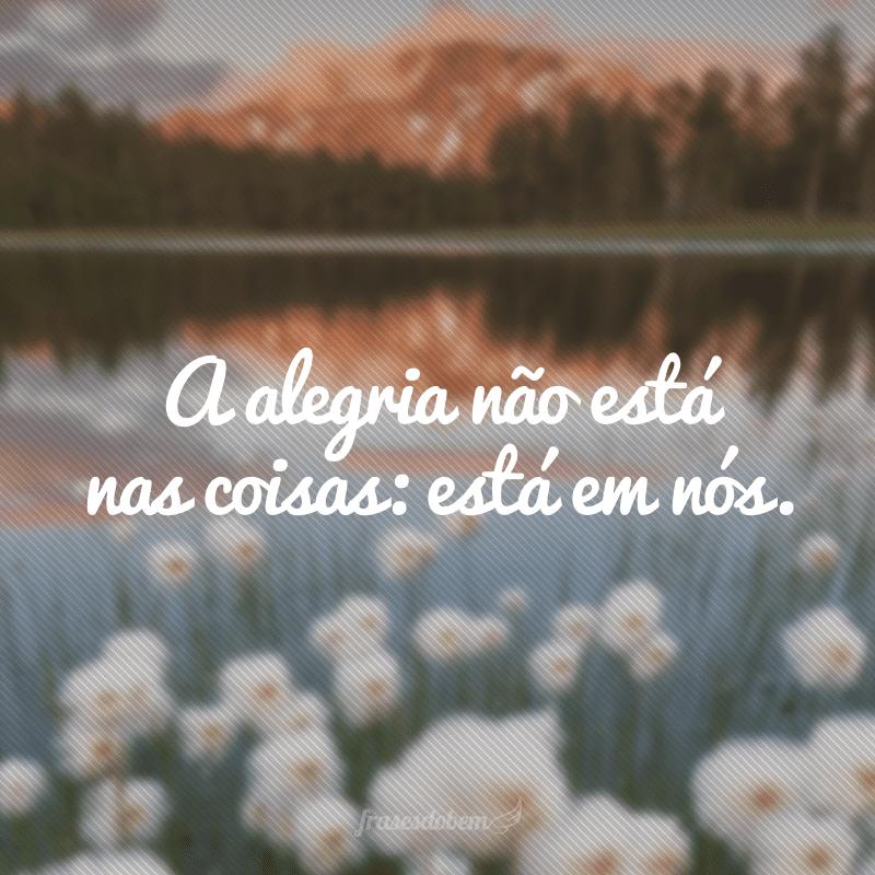 A alegria não está nas coisas: está em nós.