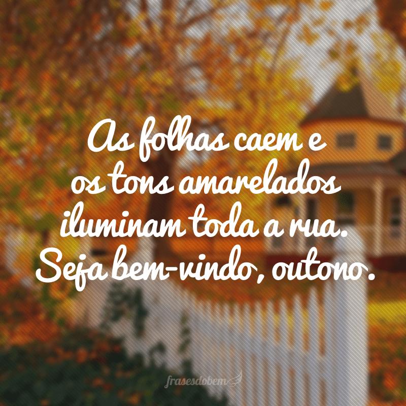 As folhas caem e os tons amarelados iluminam toda a rua. Seja bem-vindo, outono.