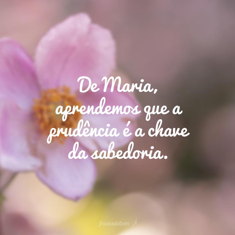 De Maria, aprendemos que a prudência é a chave da sabedoria.