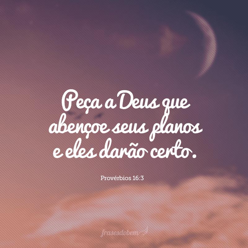 Peça a Deus que abençoe seus planos e eles darão certo.