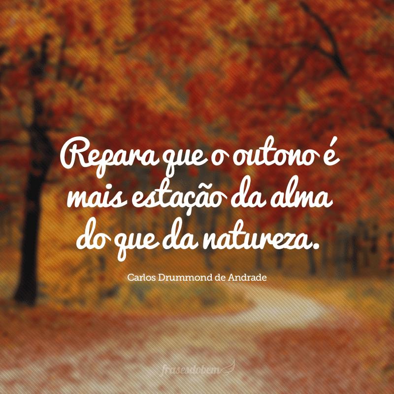 Repara que o outono é mais estação da alma do que da natureza.