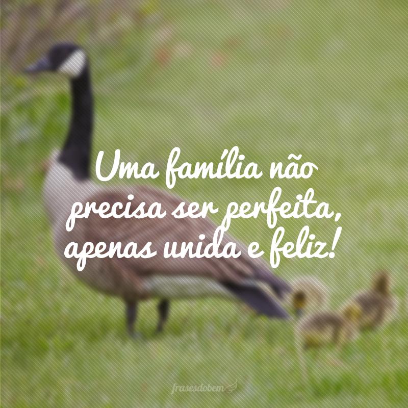 Uma família não precisa ser perfeita, apenas unida e feliz!