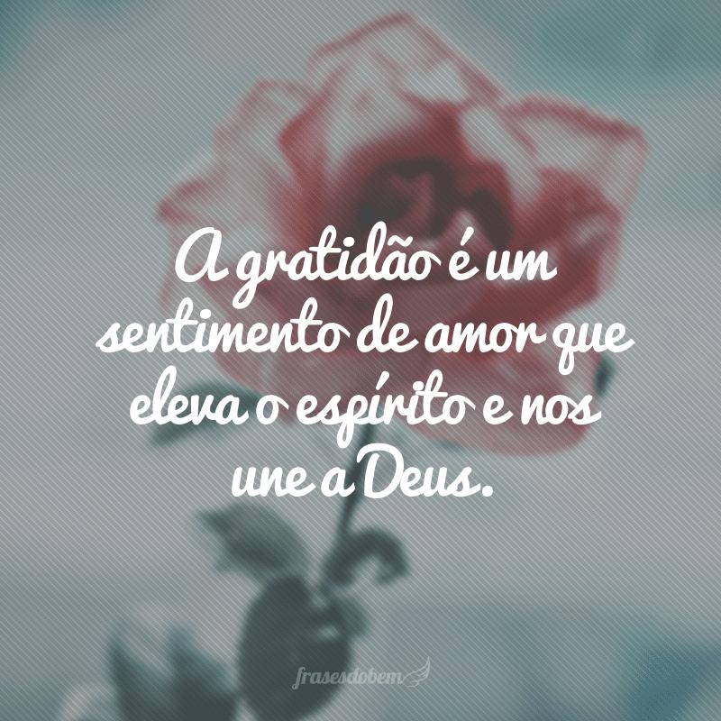 A gratidão é um sentimento de amor que eleva o espírito e nos une a Deus.