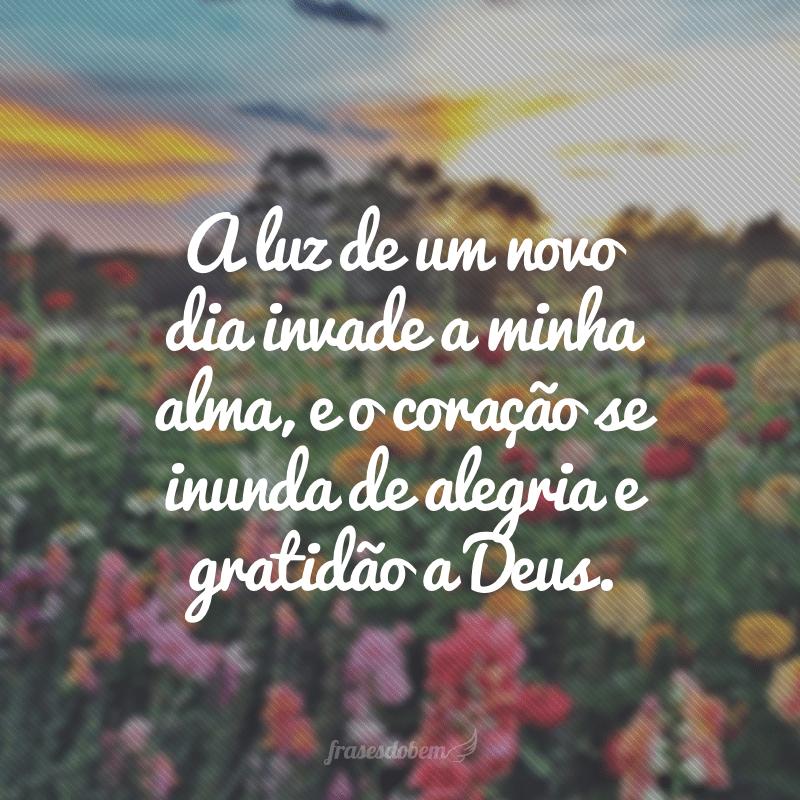 A luz de um novo dia invade a minha alma, e o coração se inunda de alegria e gratidão a Deus.