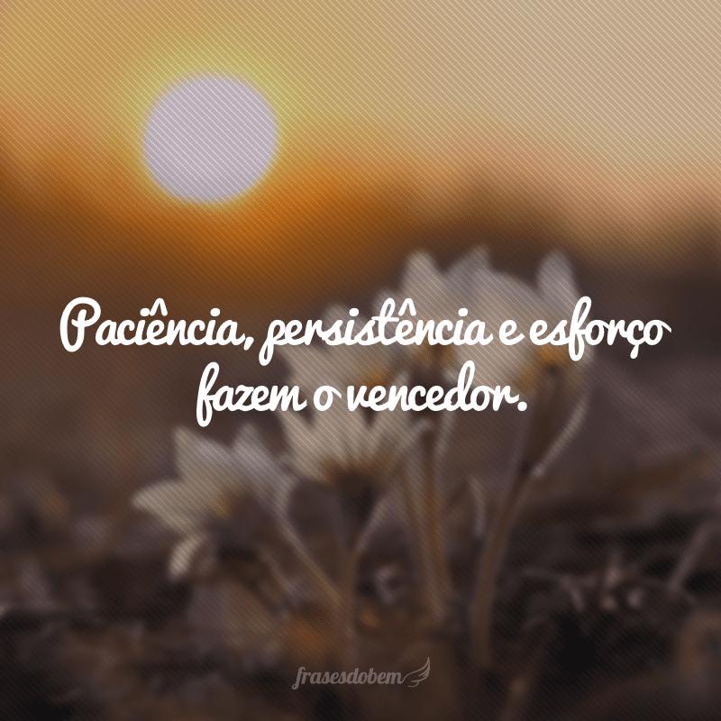 Paciência, persistência e esforço fazem o vencedor.