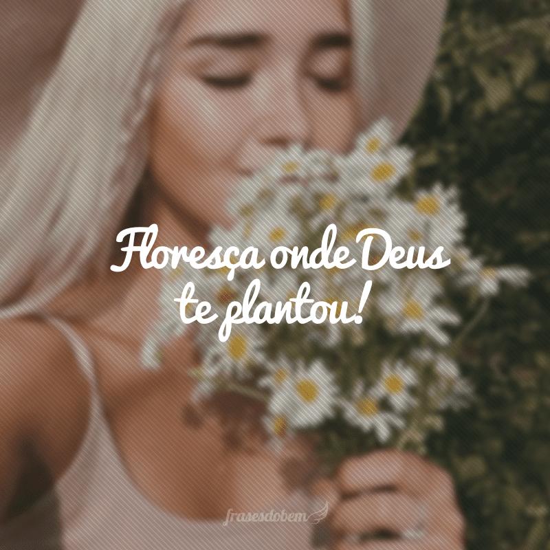 Floresça onde Deus te plantou!