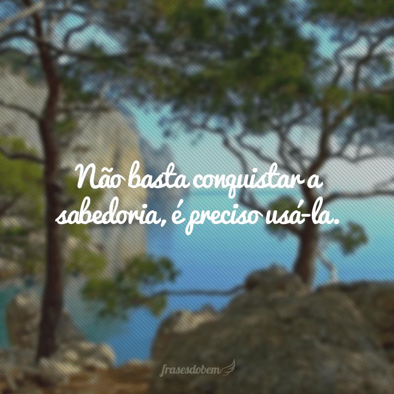 Não basta conquistar a sabedoria, é preciso usá-la.