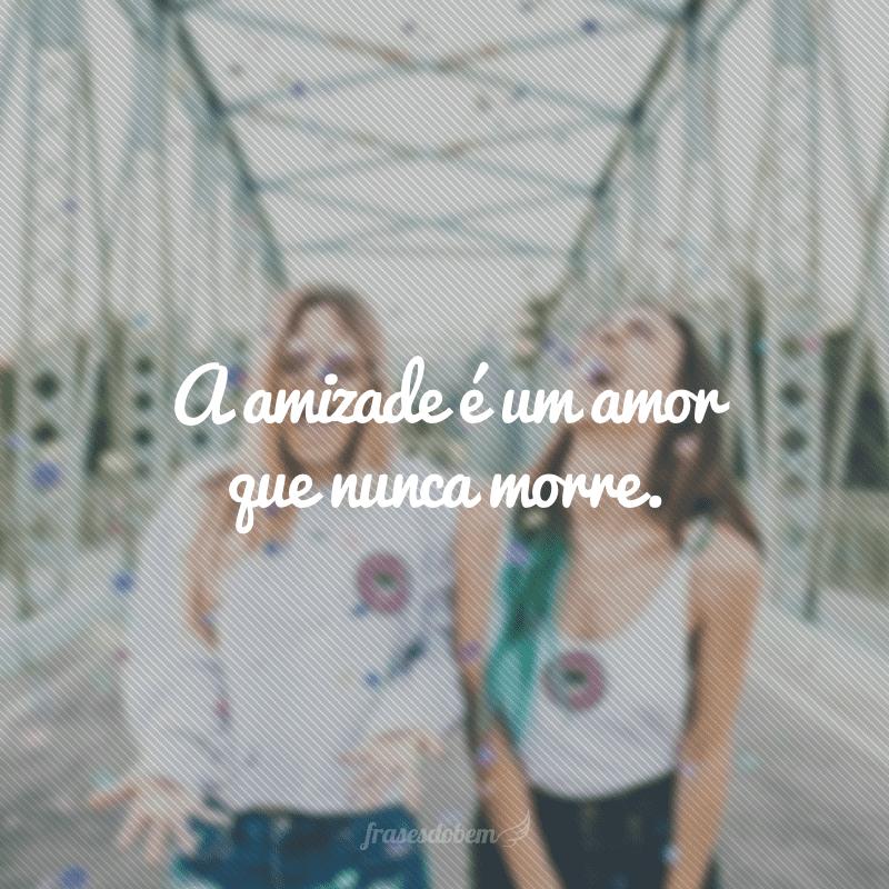 A amizade é um amor que nunca morre.