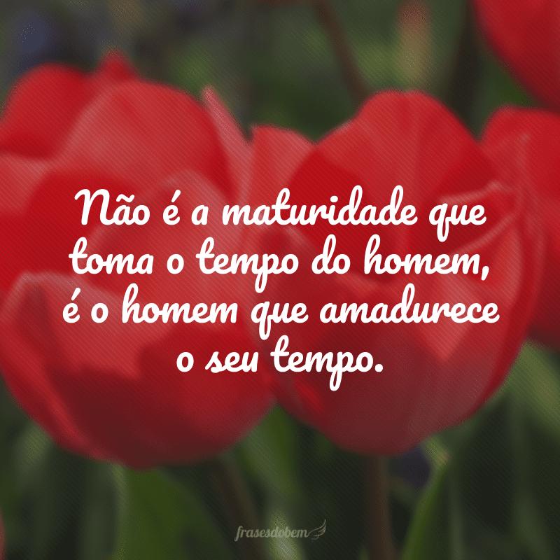 Não é a maturidade que toma o tempo do homem, é o homem que amadurece o seu tempo.