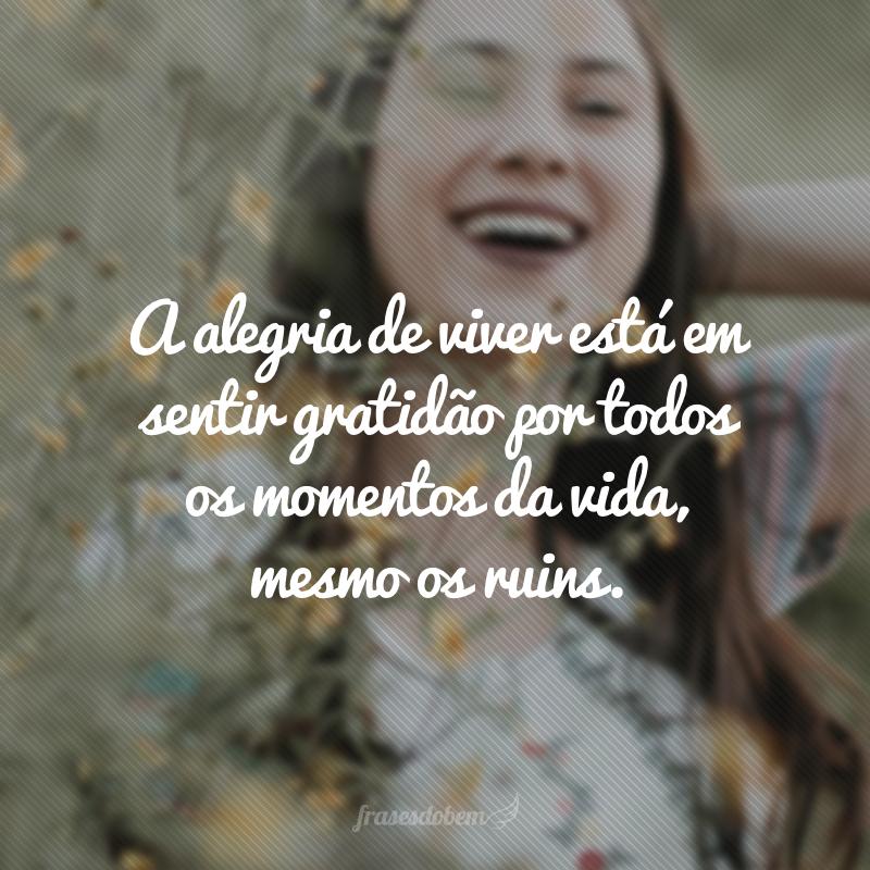A alegria de viver está em sentir gratidão por todos os momentos da vida, mesmo os ruins.