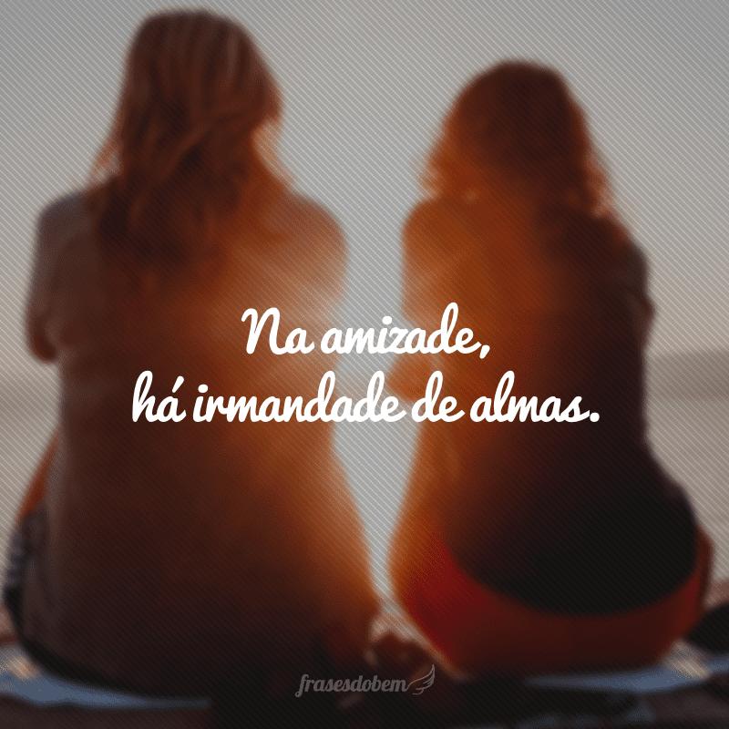 Na amizade, há irmandade de almas.