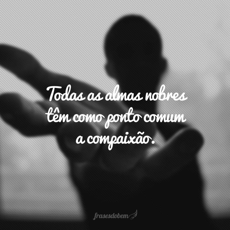 Todas as almas nobres têm como ponto comum a compaixão.