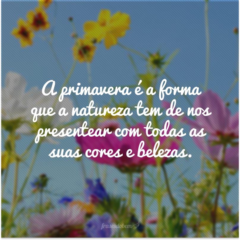 A primavera é a forma que a natureza tem de nos presentear com todas as suas cores e belezas.
