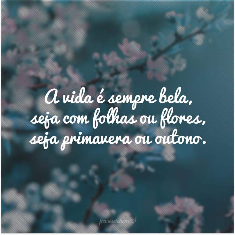 A vida é sempre bela, seja com folhas ou flores, seja primavera ou outono.