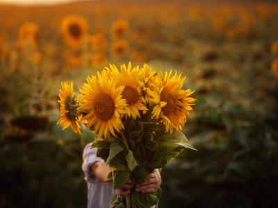 40 frases Setembro Amarelo para espalhar amor e compreensão