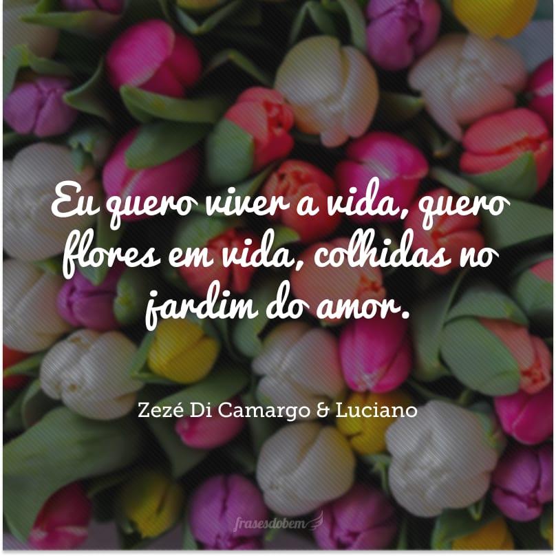 Eu quero viver a vida, quero flores em vida, colhidas no jardim do amor.