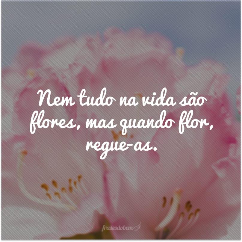 Nem tudo na vida são flores, mas quando flor, regue-as.