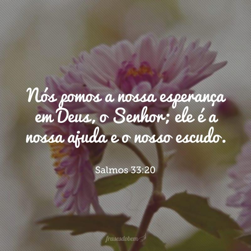 Nós pomos a nossa esperança em Deus, o Senhor; ele é a nossa ajuda e o nosso escudo.