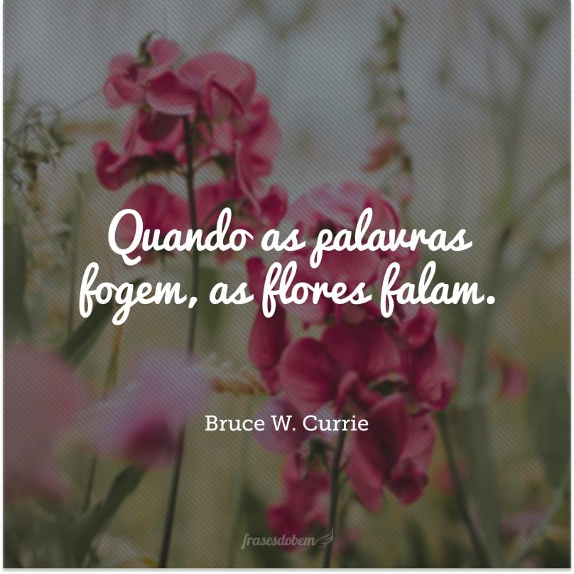 Quando as palavras fogem, as flores falam.