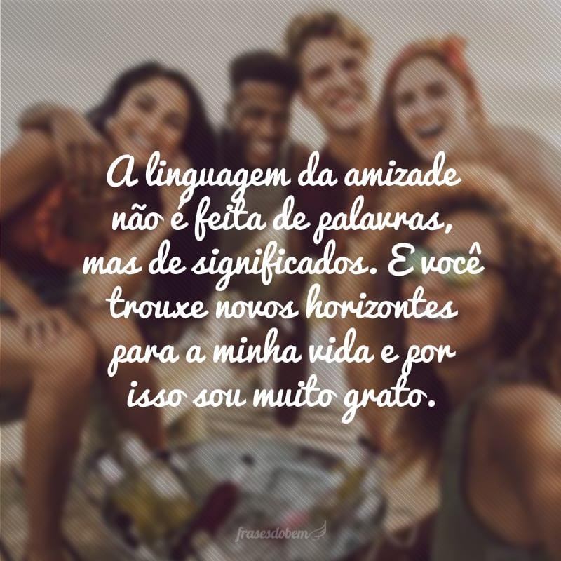 A linguagem da amizade não é feita de palavras, mas de significados. E você trouxe novos horizontes para a minha vida e por isso sou muito grato.