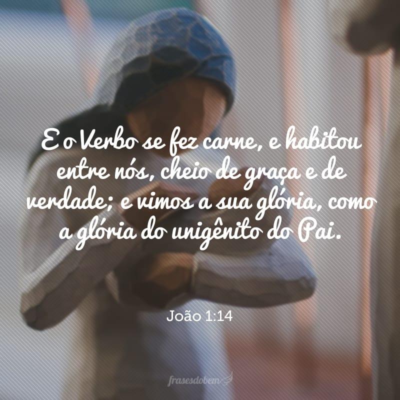 E o Verbo se fez carne, e habitou entre nós, cheio de graça e de verdade; e vimos a sua glória, como a glória do unigênito do Pai.