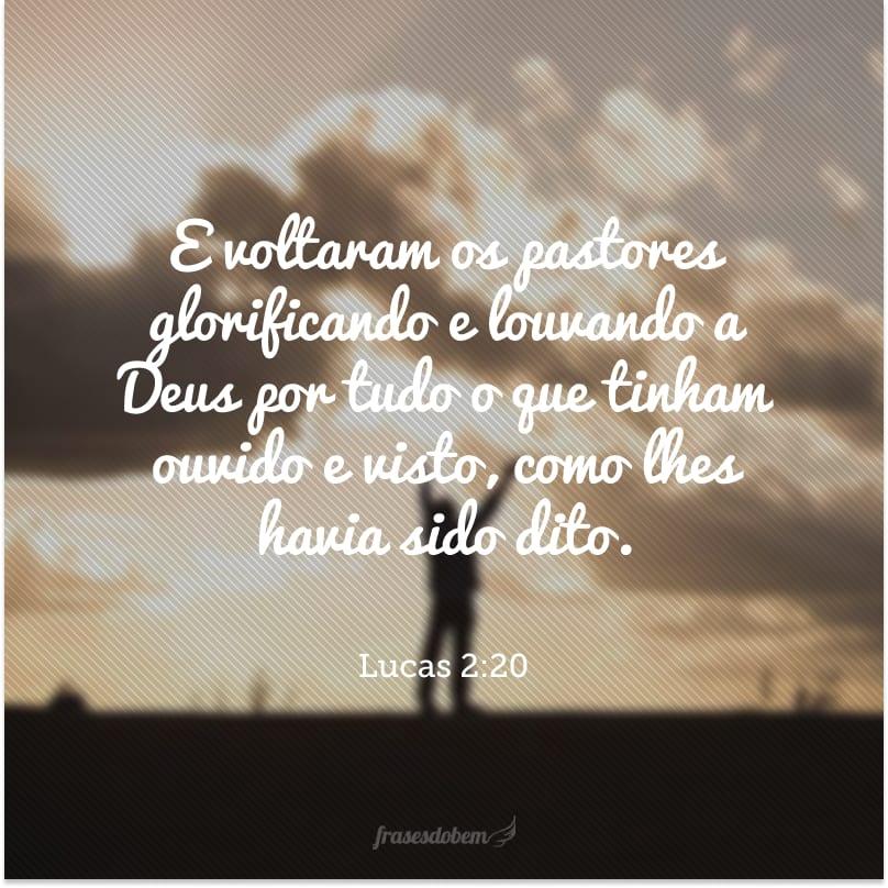 E voltaram os pastores glorificando e louvando a Deus por tudo o que tinham ouvido e visto, como lhes havia sido dito.