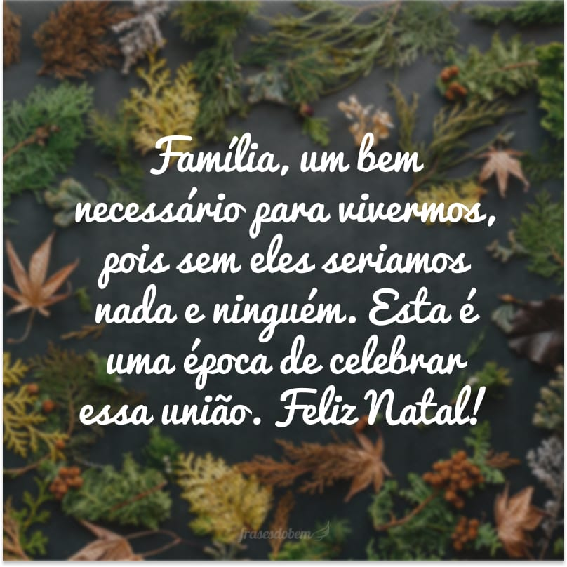 Família, um bem necessário para vivermos, pois sem eles seriamos nada e ninguém. Esta é uma época de celebrar essa união. Feliz Natal!