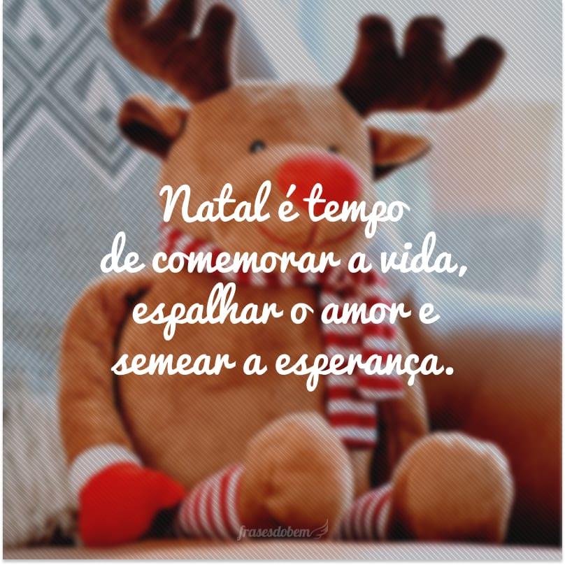 Natal é tempo de comemorar a vida, espalhar o amor e semear a esperança.