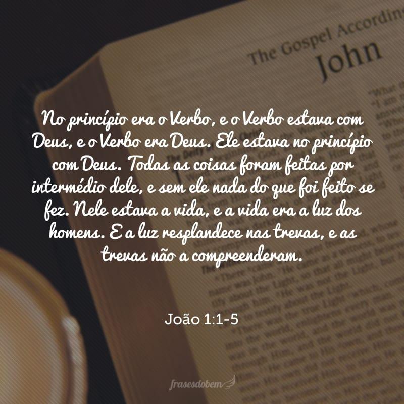No princípio era o Verbo, e o Verbo estava com Deus, e o Verbo era Deus. Ele estava no princípio com Deus. Todas as coisas foram feitas por intermédio dele, e sem ele nada do que foi feito se fez. Nele estava a vida, e a vida era a luz dos homens. E a luz resplandece nas trevas, e as trevas não a compreenderam.