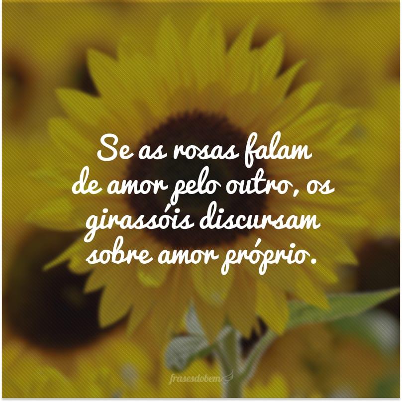 Se as rosas falam de amor pelo outro, os girassóis discursam sobre amor próprio.