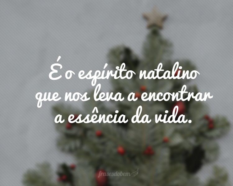 É o espírito natalino que nos leva a encontrar a essência da vida.