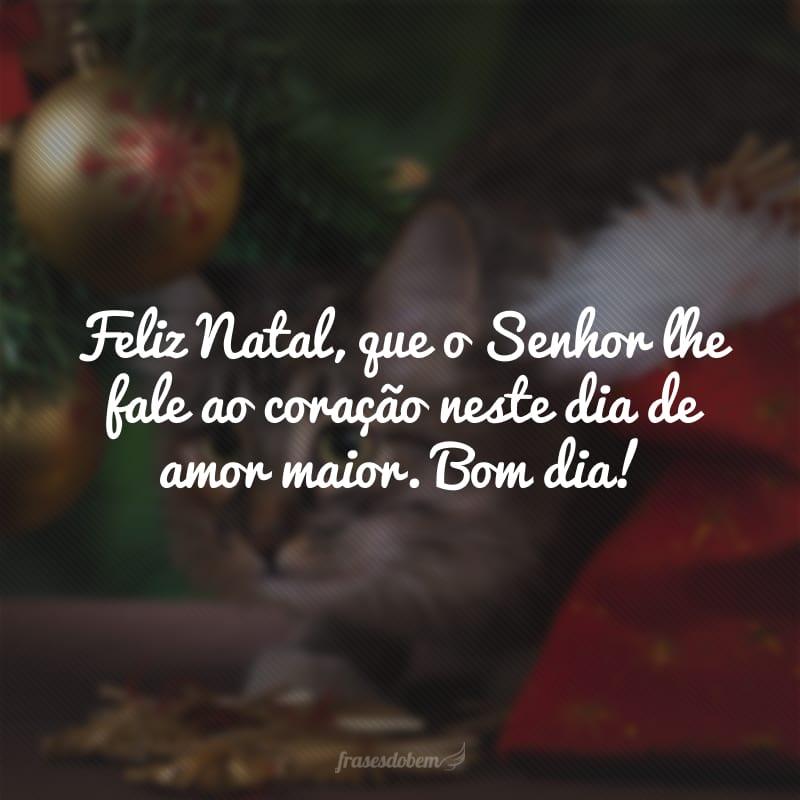 Feliz Natal, que o Senhor lhe fale ao coração neste dia de amor maior. Bom dia!