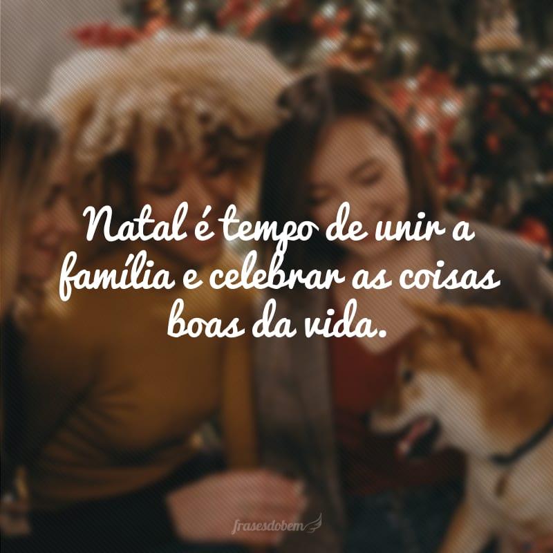 Natal é tempo de unir a família e celebrar as coisas boas da vida.