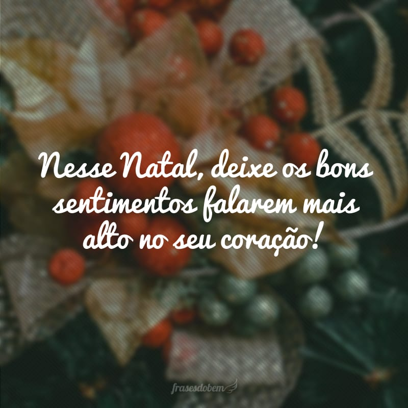 Nesse Natal, deixe os bons sentimentos falarem mais alto no seu coração!