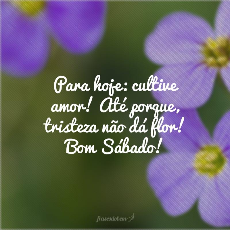 Para hoje: cultive amor! Até porque, tristeza não dá flor! Bom Sábado!