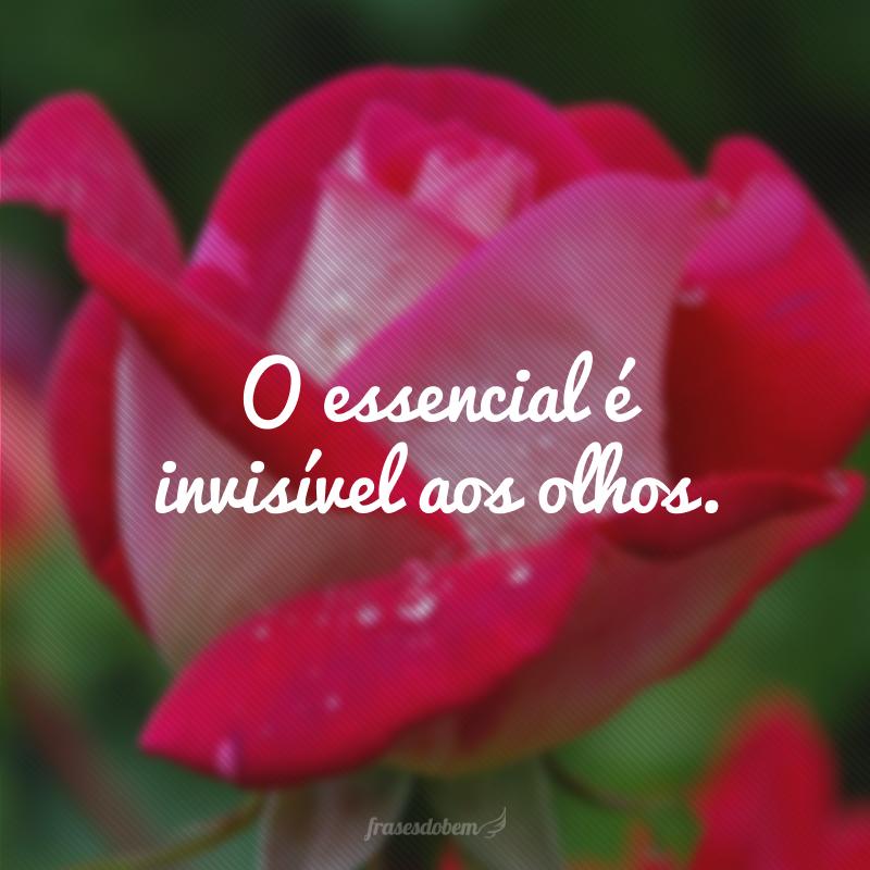 O essencial é invisível aos olhos.